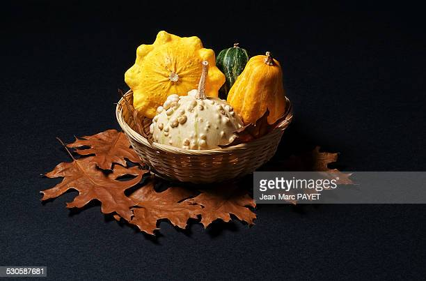 basket of pumpkins - jean marc payet stock pictures, royalty-free photos & images