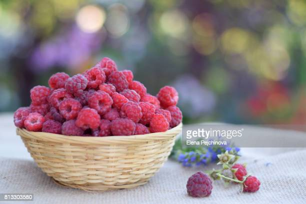 Basket of raspberries at the backyard table