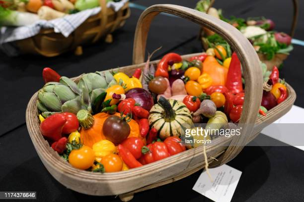 A basket of vegetables is displayed during judging for the giant vegetable competition at the Harrogate Autumn Flower Show on September 13 2019 in...