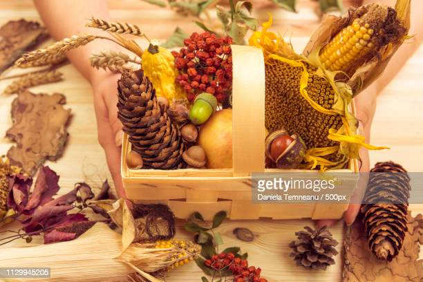 Basket With Fall Ingredients Held In Womans Hands