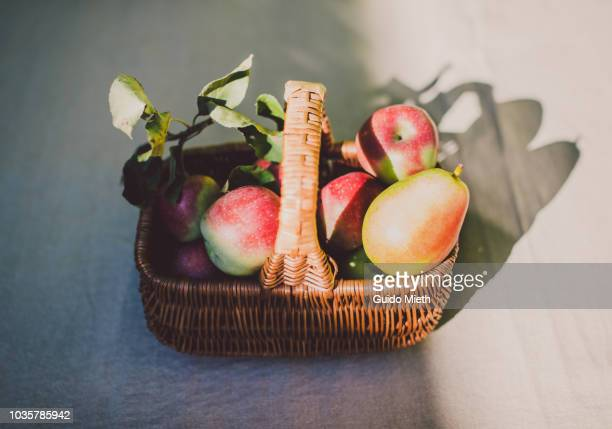 Basket with fruits in sunlight.