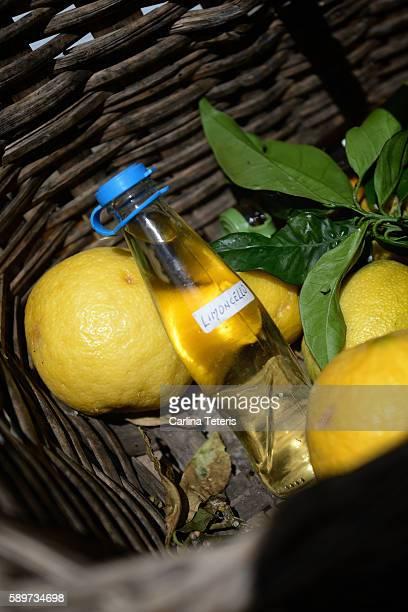 Basket with lemons and home made lemoncello
