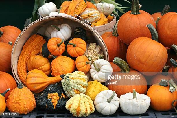 Basket with overflowing pumpkins - autumn background