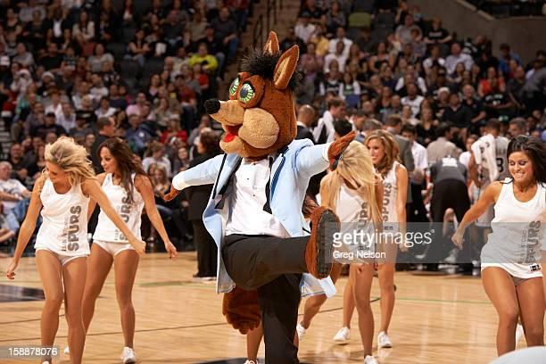 View of San Antonio Spurs mascot The Coyote dancing on court with cheerleaders during game vs Boston Celtics at ATT Center San Antonio TX CREDIT Greg...
