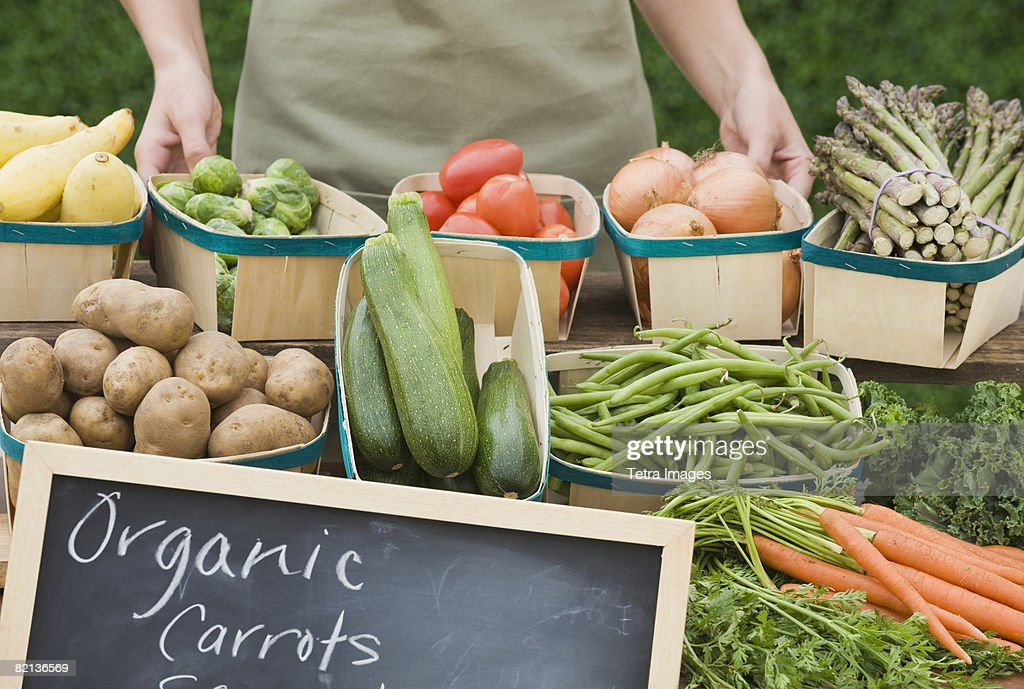 Baskets of organic vegetables : Stock Photo