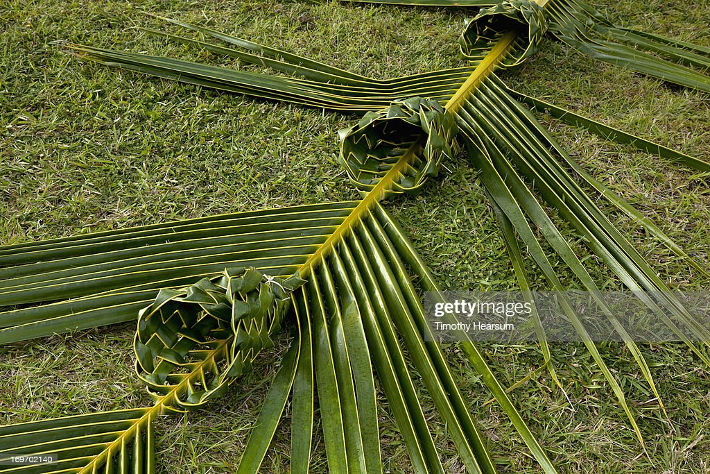 Baskets woven into one coconut palm frond : Stock Photo