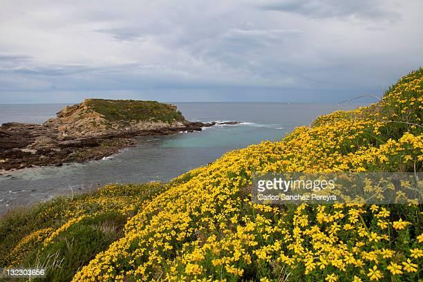 basque country coast - オンダリビア ストックフォトと画像
