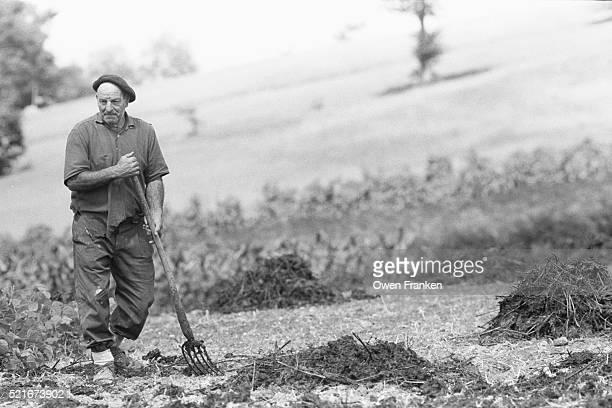 basque farmer carrying pitchfork in field - siglo xx fotografías e imágenes de stock