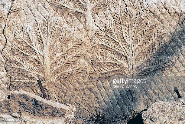 Bas-relief from the royal palace of Sennacherib, Nineveh, surroundings of Mosul , Iraq. Assyrian civilisation, 8th-7th century BC. Detail.