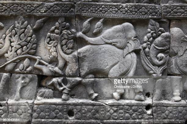 Bas-reliefs of elephants on the Baphuon temple. Located 200m northwest of the Bayon, the Baphuon is a pyramidal representation of mythical Mt Meru....