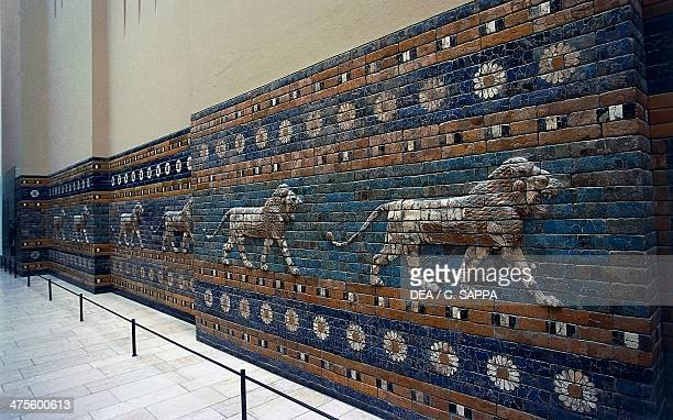 Basreliefs of lions along the Processional Way reconstruction in the Pergamon Museum Berlin Germany Babylonian civilisation 2nd millennium 6th...
