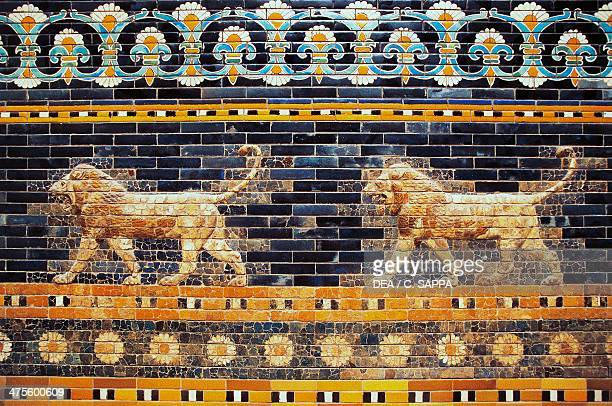 Basreliefs of two lions along the Processional Way reconstruction in the Pergamon Museum Berlin Germany Babylonian civilisation 2nd millennium 6th...