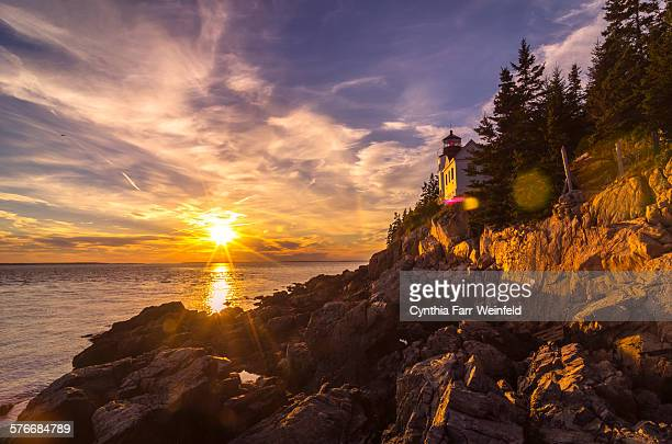 Bass harbor light golden hour