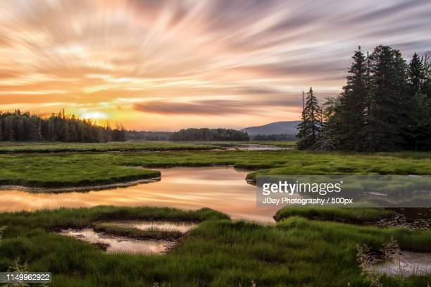 bass harbor marsh - maine stock pictures, royalty-free photos & images