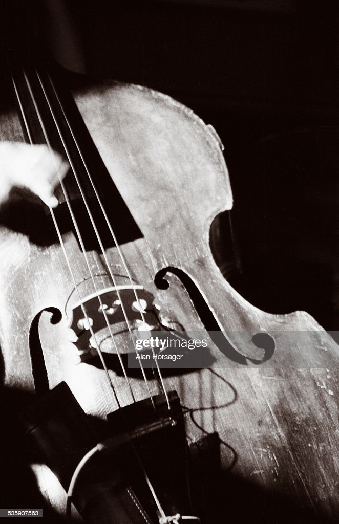 Bass : Stock Photo