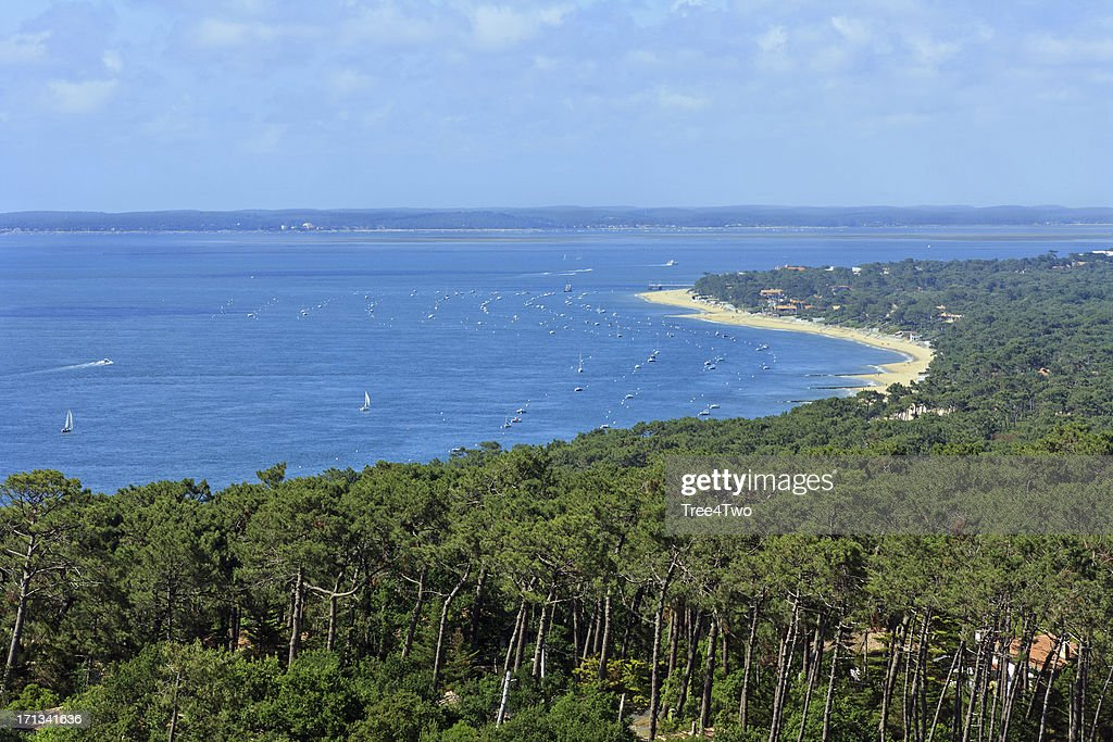 Bassin d'Arcachon - Dune of Pyla : Stock Photo