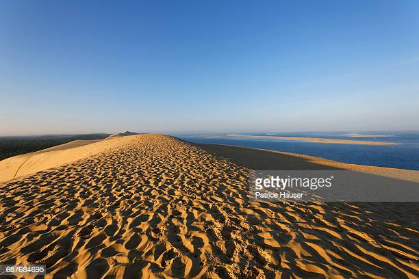 bassin d'arcachon - gironde stock pictures, royalty-free photos & images