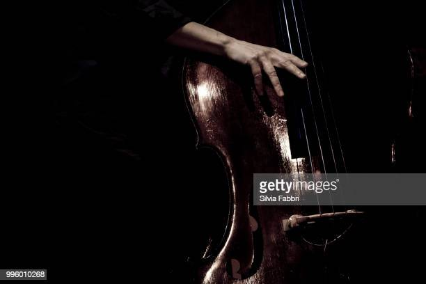 basstounding - musical instrument string stock pictures, royalty-free photos & images