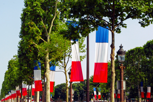 Bastille Day at Champs-Elysees, Paris 462496939
