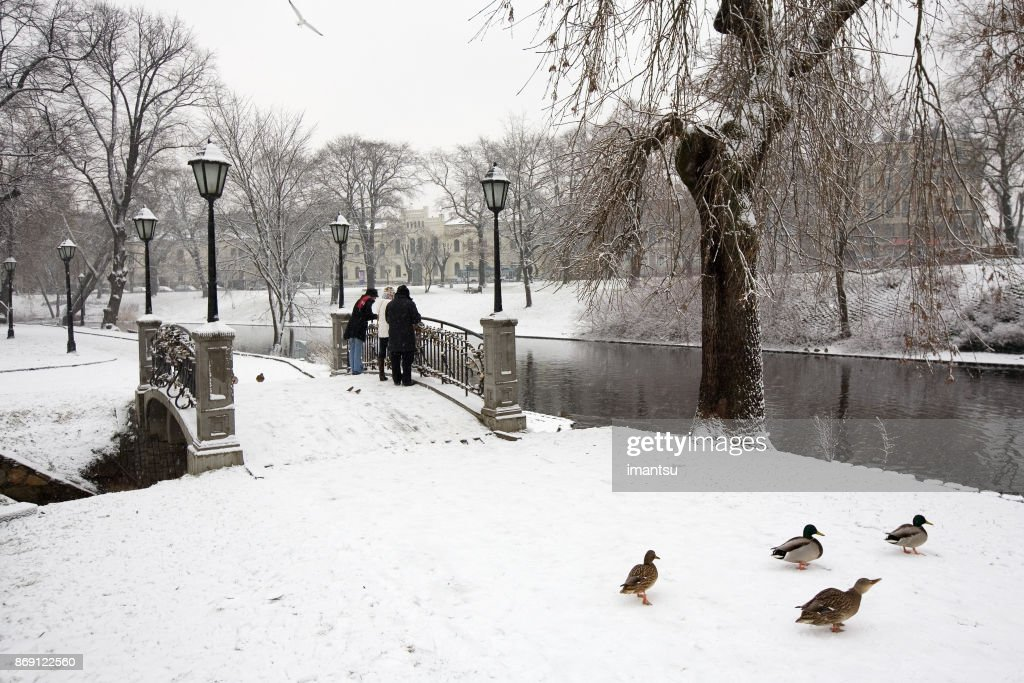 Bastion hill park of Riga in the winter : Stock Photo