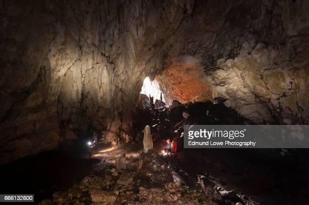 Bat Cave in Raja Ampat, Indonesia