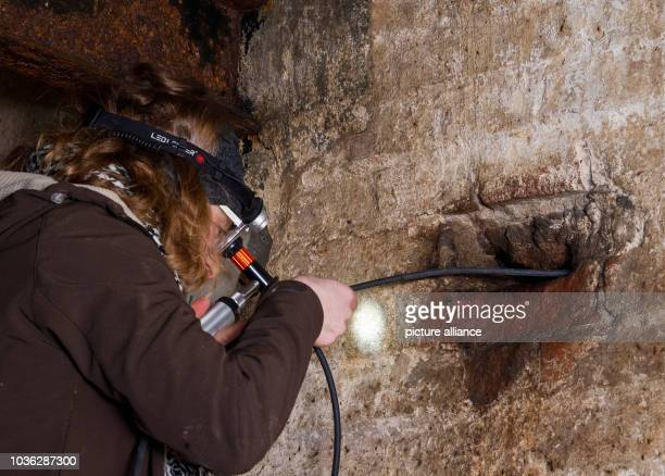 A bat expert looks into a hole with an endoscope camera in the basement of the old brewery in Frankfurt Germany 17 January 2014 Equipped with lights...