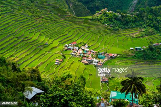 Batad Rice Terraces near Banaue, Philippines