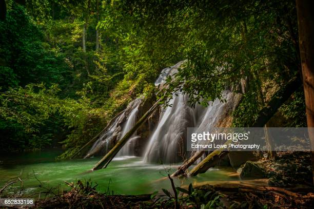 batanta island waterfall, indonesia - raja ampat islands stock photos and pictures
