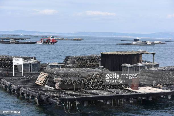 Batea seen near O Grove Bateas are wooden platforms in the water for the farming of mussels oysters and scallops O Grove is a fishing village which...