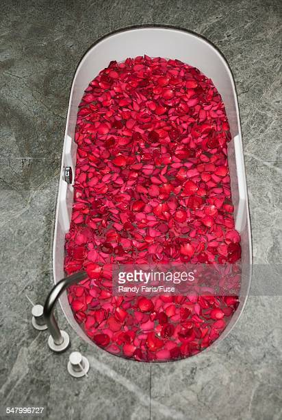 Bath Filled with Flower Petals
