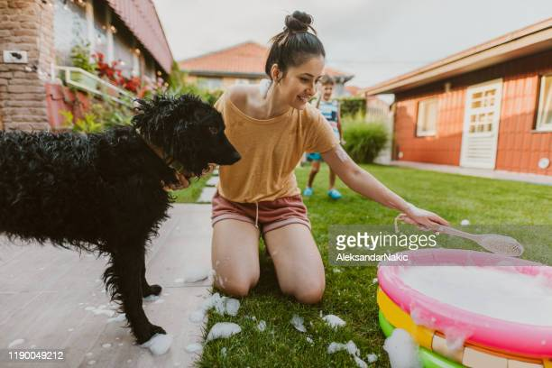 bath for our dog - taking a bath stock pictures, royalty-free photos & images