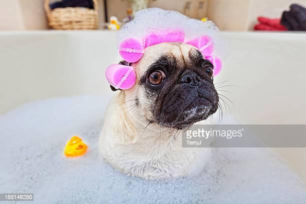 Il momento del bagno