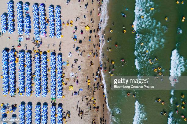 bathers are seen on the beach and in the sea - busan stock photos and pictures