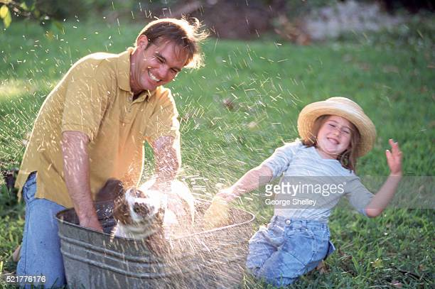 Bathing their dog