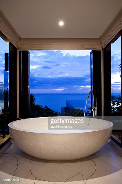 A bathroom and bathtub looking out to the skyline