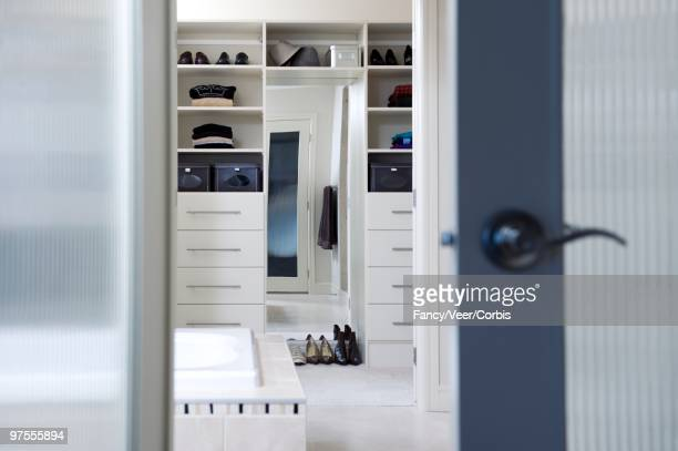 Bathroom and Walk-in Closet