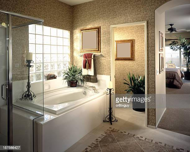 Bathroom Interior Home Design
