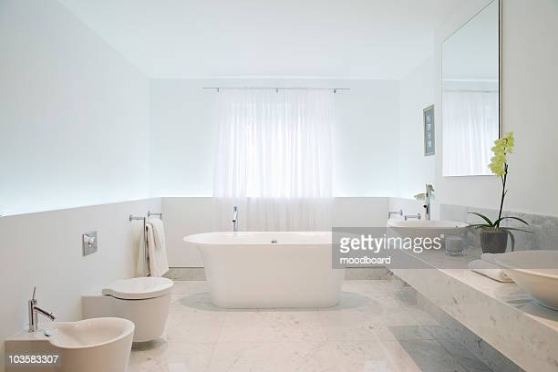 bathroom - toilet planter stock pictures, royalty-free photos & images