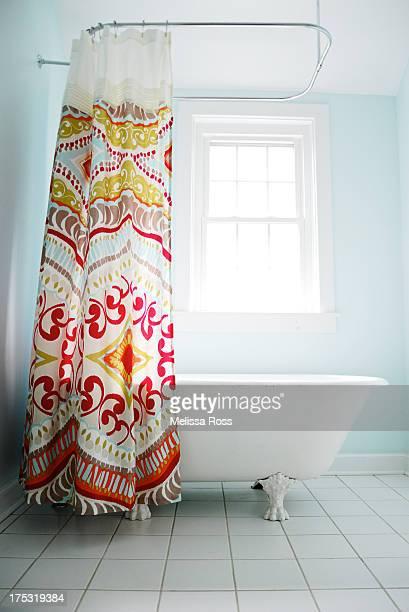 Bathroom shower with clawfoot tub.