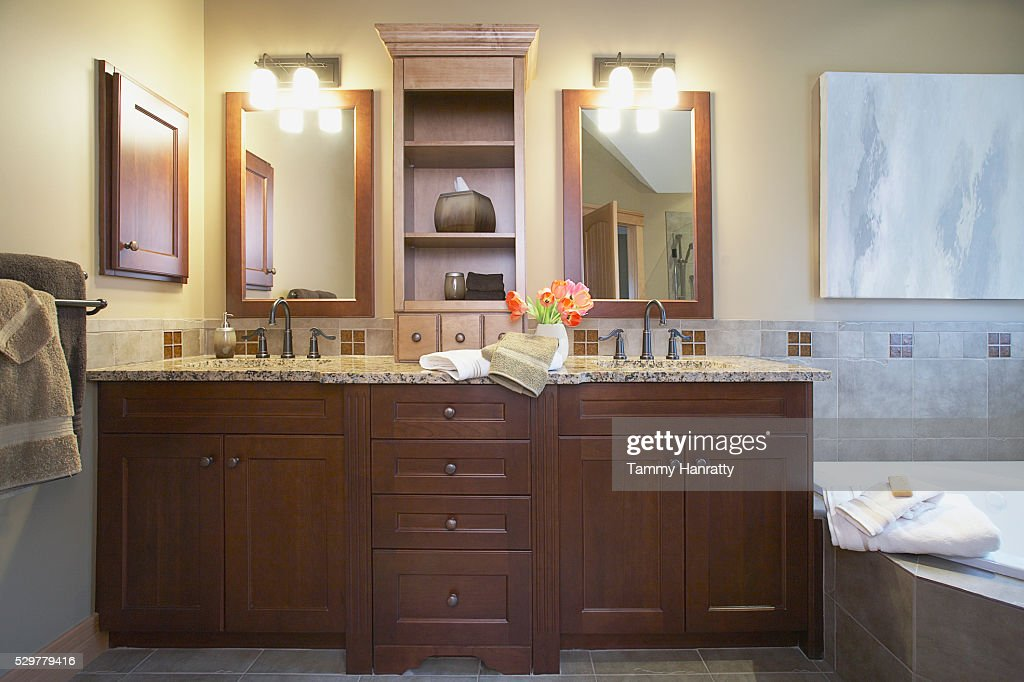 Bathroom sinks : Bildbanksbilder