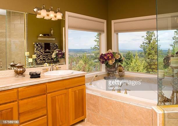 bathroom vanity and tub