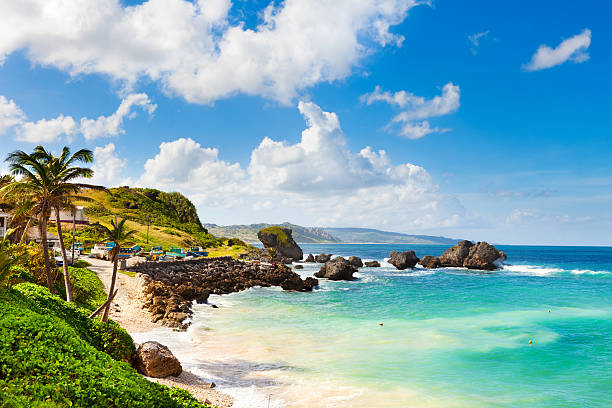 Bathsheba, Barbados.