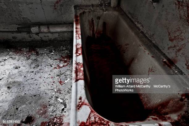 bathtime - bloody gore stock pictures, royalty-free photos & images