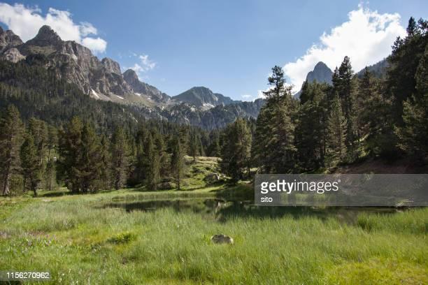 batisielles mountain lake, huesca valley, spain - アラゴン ストックフォトと画像