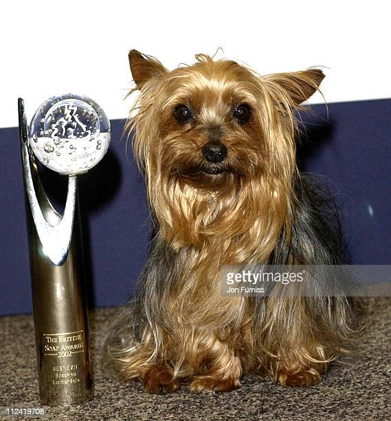 Batley who won best exit from Emmerdale during The British Soap Awards Arrivals 2002 at London in London Great Britain