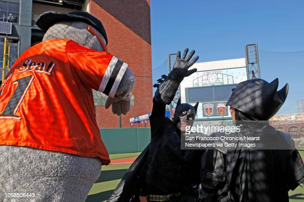 Batman and Batkid high five Lou Seal after a battle with the Penguin who kidnapped the SF Giants' mascot at AT&T Park in San Francisco Ca., on Friday...