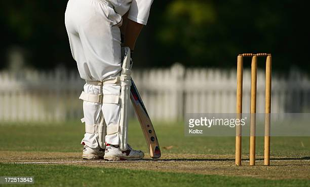 batsman at the crease - cricket stockfoto's en -beelden