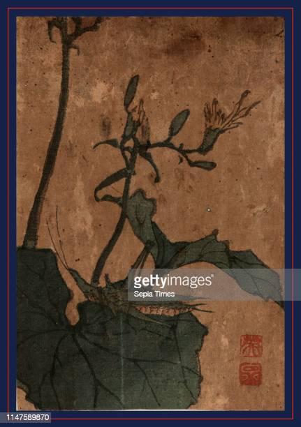 Batta[inago, between 1830 and 1844, Ikeda, Eisen, 1790-1848