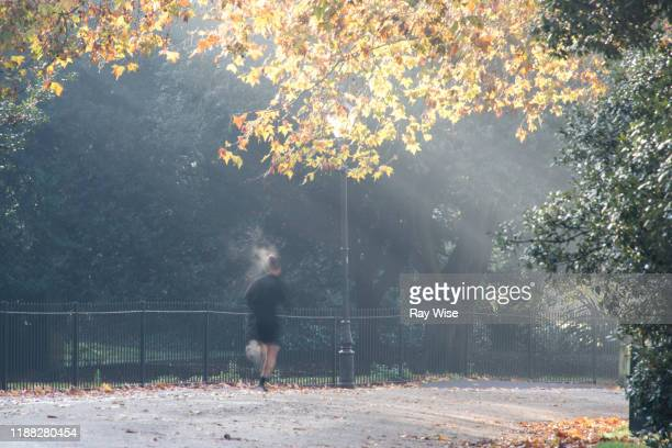 battersea park in london one person under a street lamp - battersea park stock pictures, royalty-free photos & images
