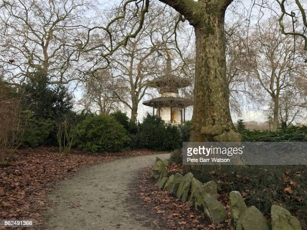 battersea park pagoda from a woodland path - battersea park stock photos and pictures